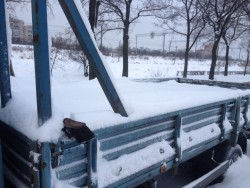 Снегу навалило конкретно - z3XCHN98Wpg.jpg